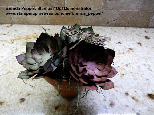 Succulent Flower Pot 4-17